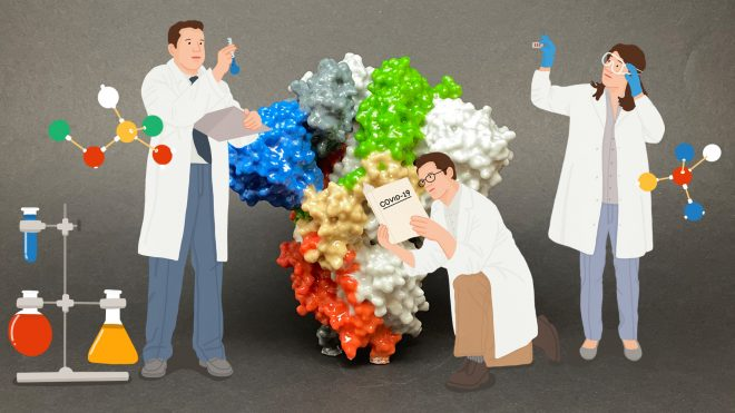 바이러스 생활사와 항바이러스제 개발 전략